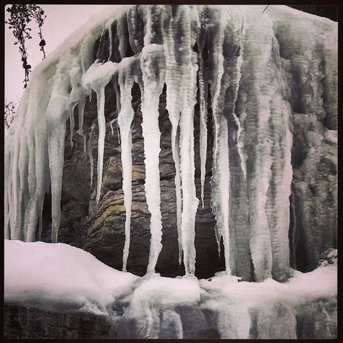 Always find beauty in the simplest things Cold Snow Icicles IrrelevantQuote