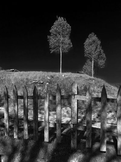 Fence Trees Hill Nature Black And White No People Light And Shadow The Great Outdoors - 2016 EyeEm Awards Monochrome Gray Sky