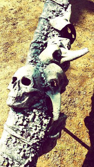 Sceleton Death Theater Peterburg