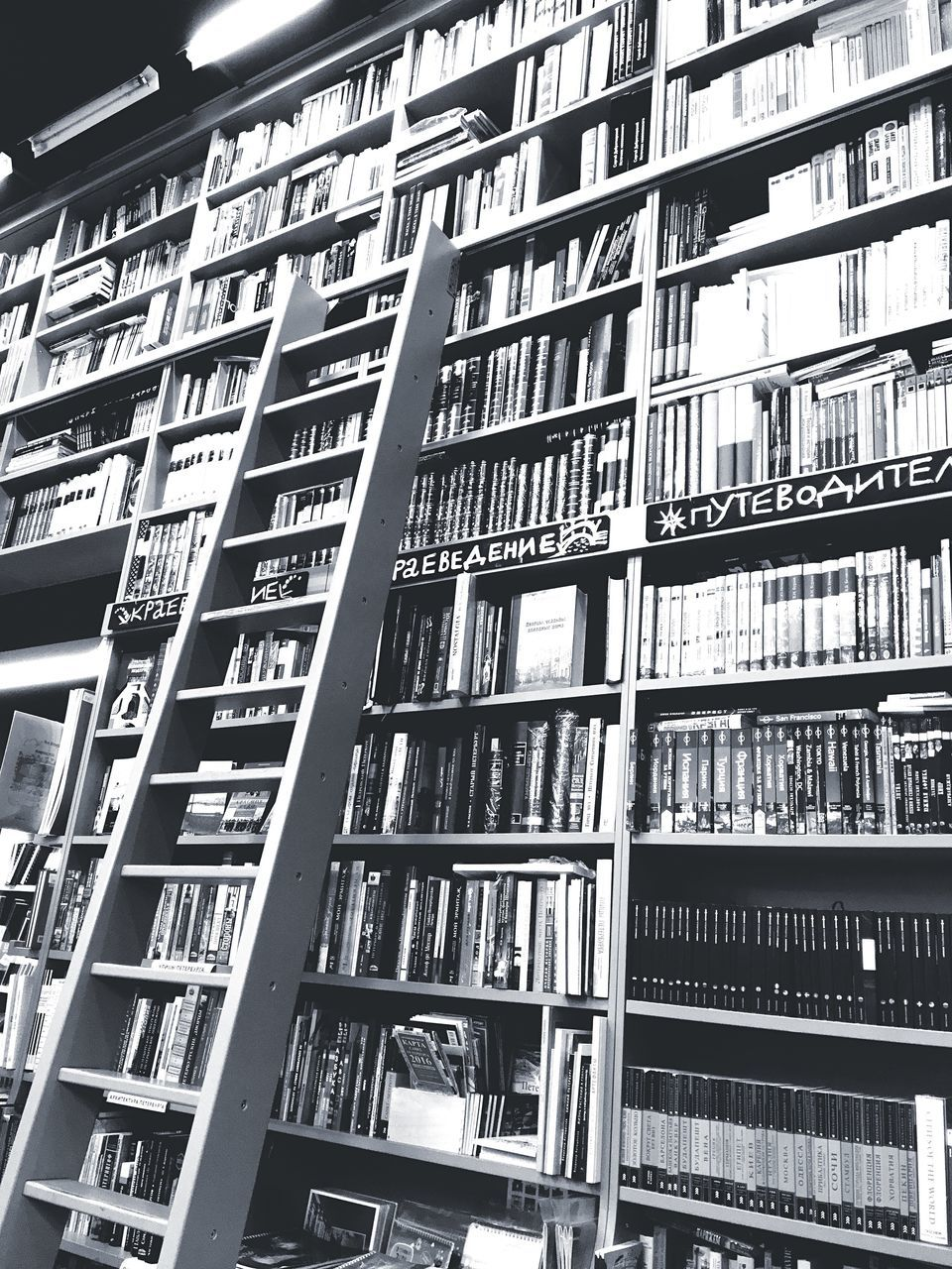 bookshelf, shelf, library, book, indoors, low angle view, education, information medium, large group of objects, no people, literature, backgrounds, architecture, day