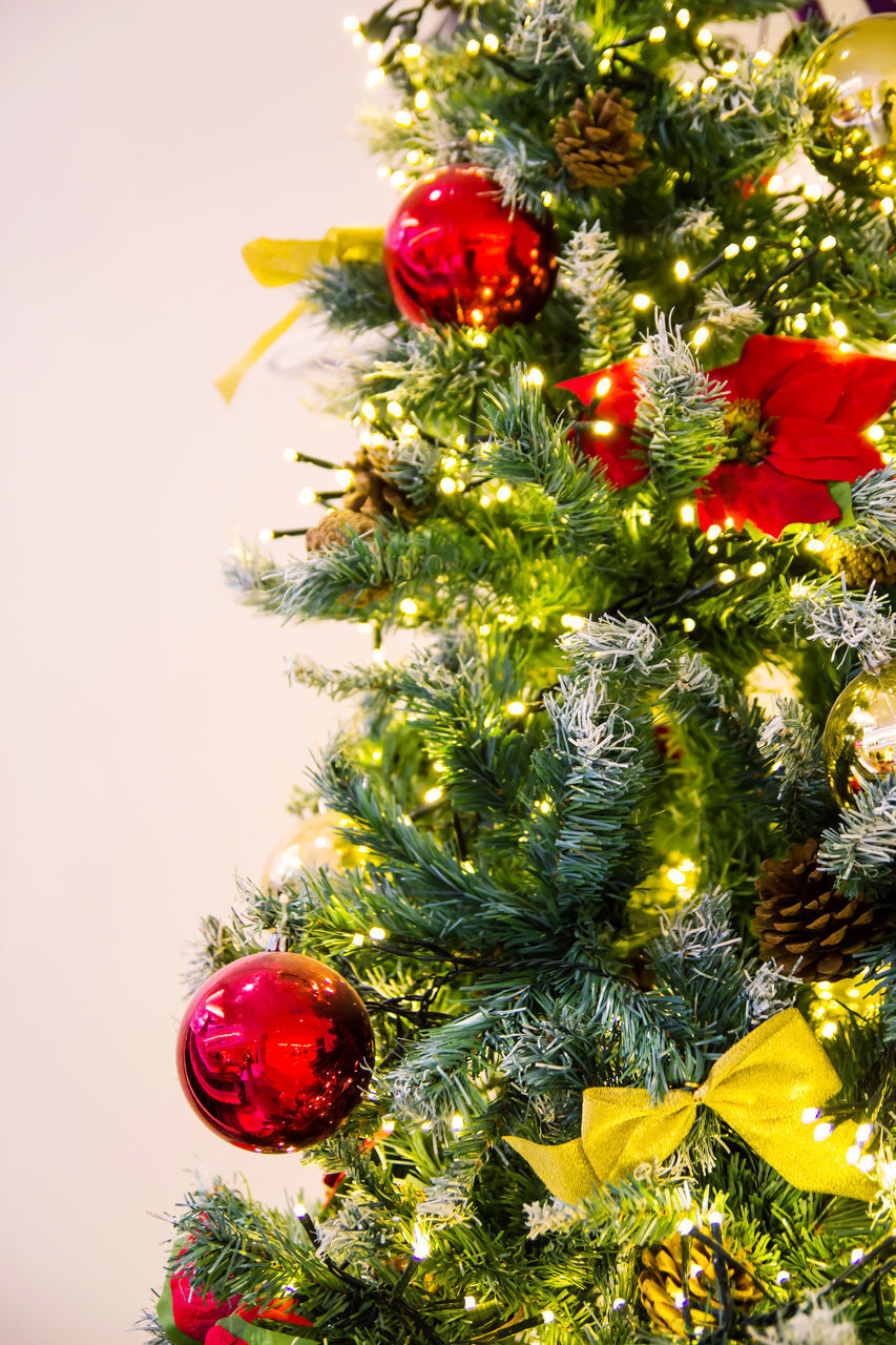 CLOSE-UP OF CHRISTMAS TREE ON DECORATION