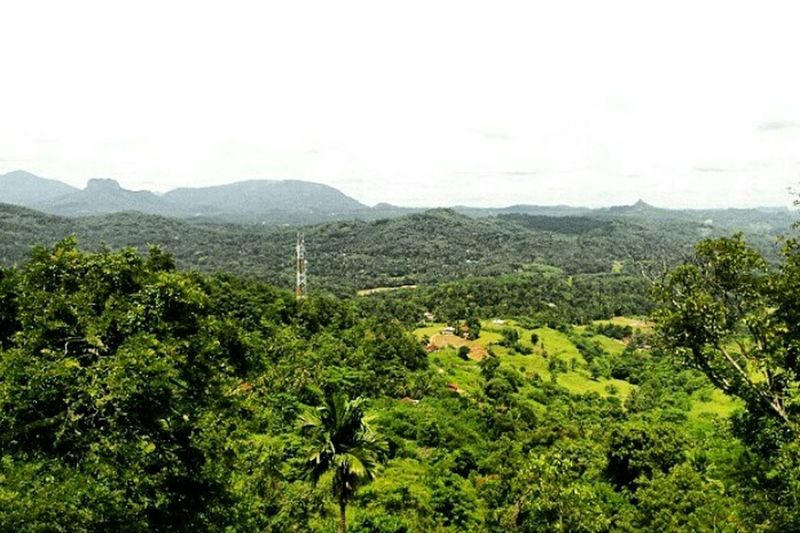 Train rides 🚄 Hello World Check This Out Kadugannawa Sri Lanka