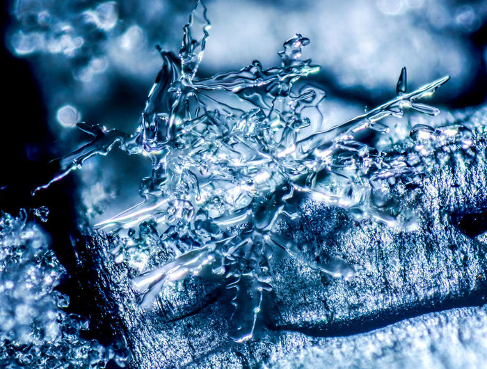 Close-up Cold Temperature Frozen Ice Ice Crystal Macro Macro Photography Makro Makro Photography Nature Outdoors Snowflake Winter