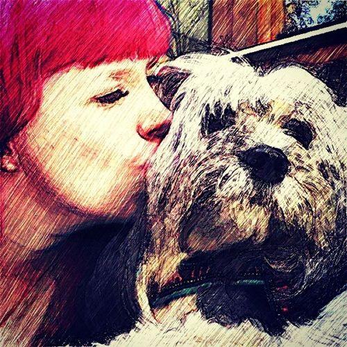 Love Mydogisbest Welshcorgi Lookmynose lhasoapso kiss summer