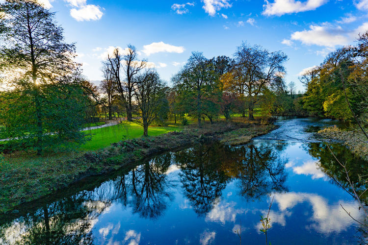 Nature landscape of green trees in a green field in cloudy blue sky day with reflection in the river Tree Water Reflection Plant Cloud - Sky Tranquility Sky Beauty In Nature Tranquil Scene Lake Scenics - Nature Nature No People Non-urban Scene Day Growth Green Color Idyllic Land Swamp