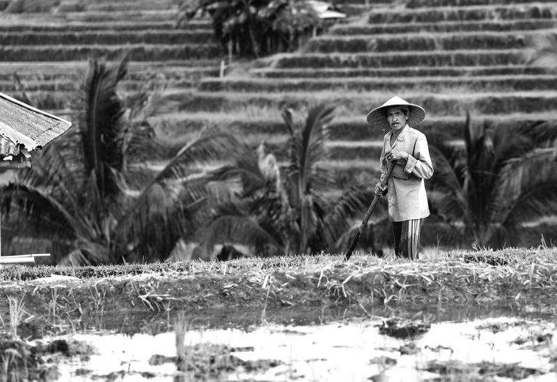 Taking a break Bali Bali Art And Culture Bali Indonesia Bali Rice Field Black And White Blackandwhite Rice Fields  Rice Paddy Rice Terraces