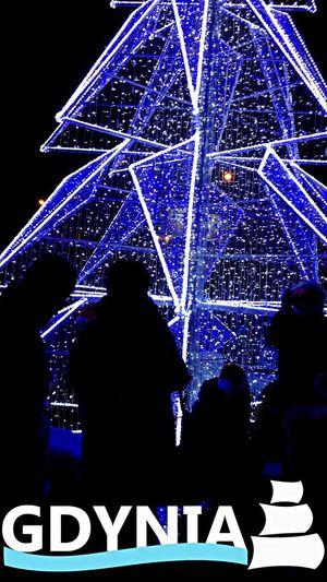 Gdynia Poland Tree Light Lights Christmas Lights Christmas Tree Dark City Modern