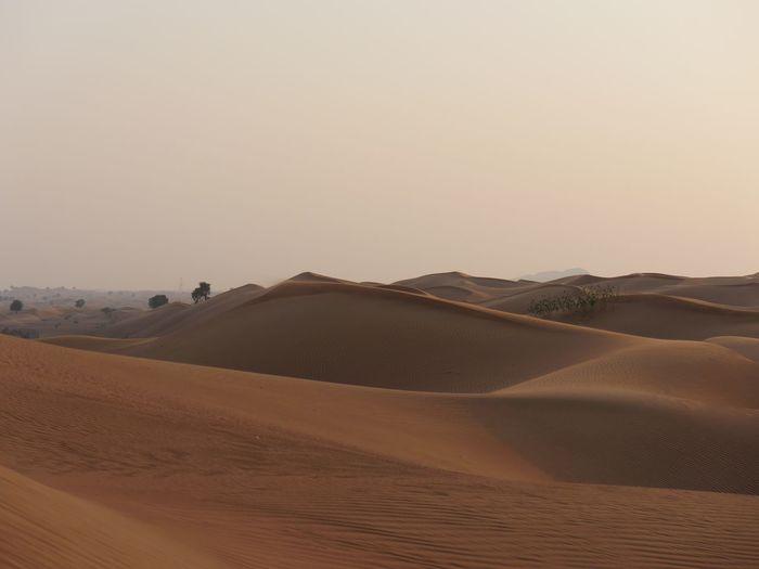 The Hatta desert, Dubai Desert Sand Dune Sand Sky Landscape Arid Climate Scenics Nature No People Beauty In Nature Outdoors Day First Eyeem Photo