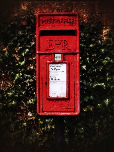 Red Communication Text Plant Mailbox Outdoors Tree Close-up Public Mailbox No People Day Nature Snail Mail Saffa EyeEmNewHere
