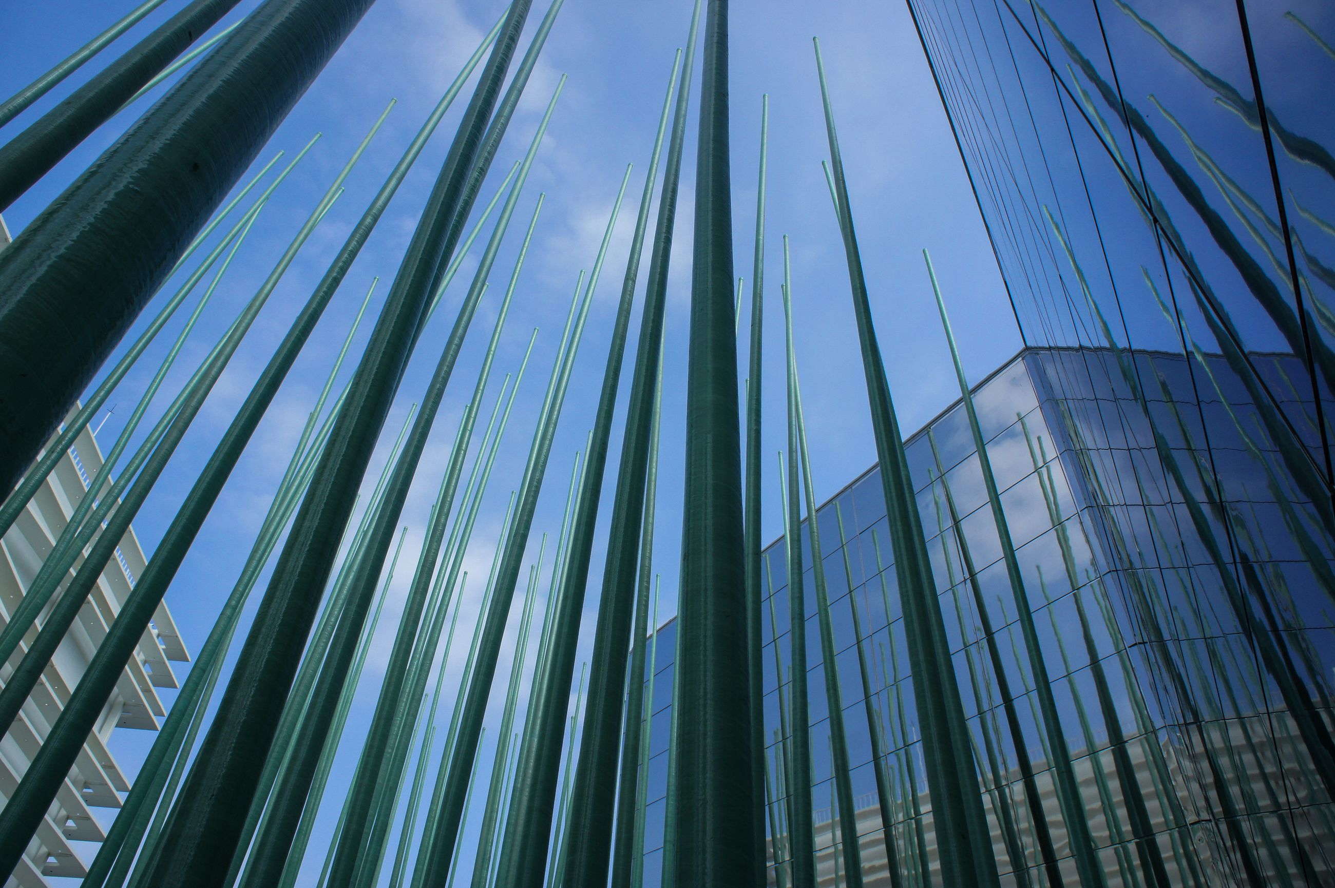 low angle view, architecture, built structure, building exterior, sky, modern, no people, building, day, city, nature, office building exterior, office, blue, tall - high, outdoors, glass - material, pattern, growth, green color, skyscraper, palm leaf, financial district