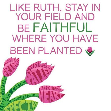 """""""Remain where God has placed you. Don't stray away from the field that God has put you in for this season just to go into another field where you will be out of His will (Ruth 2:8-9). There are dangers to jumping fields without instruction, as Boaz emphasised to Ruth in this chapter. In the same way, God wants you to stay in your God-assigned field to keep you from harm. Have you ever taken yourself to an ungodly setting and felt uneasy? That's God saying…get out of there and run into My Presence."""" @YouVersion Day 2 of RuthChallenge Ruth RuthOfTheBible VirtuousWoman WomenOfTheBible YouVersion BibleApp"""