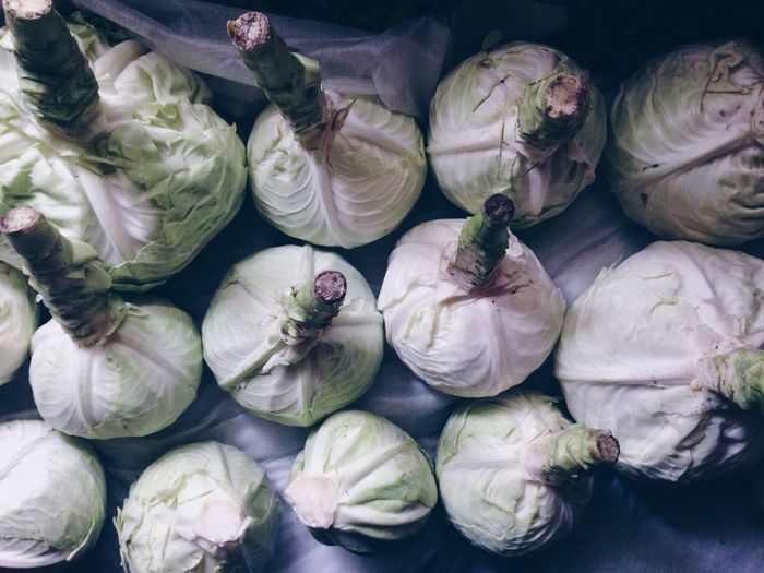 Close-up high angle view of cabbages