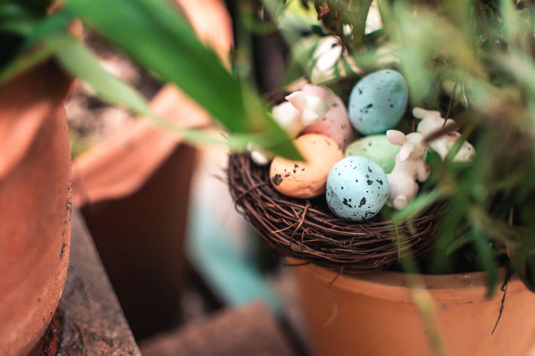 Close-up of eggs in basket