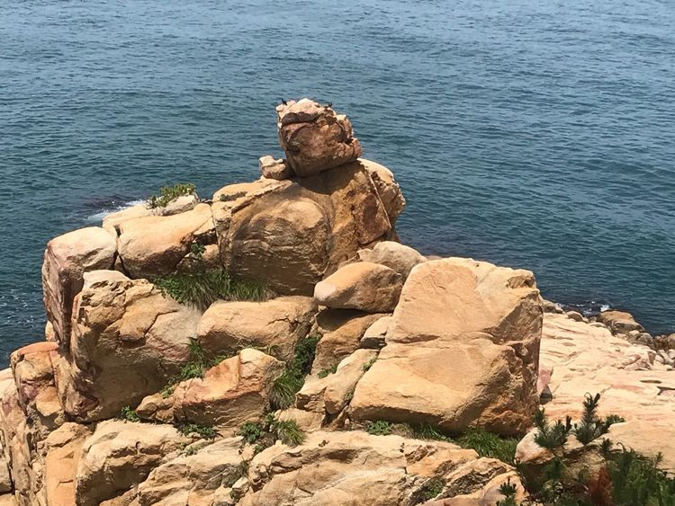 Sea Water Nature Rock Solid Day Beauty In Nature Rock - Object No People Scenics - Nature High Angle View Tranquil Scene Sunlight