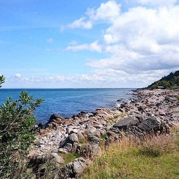 Skåneleden near Bastad