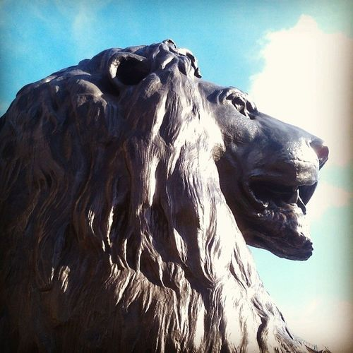 Rock lion. London Touristshit Trafalgarsquare Somanypeople notenoughlions ifonlythey were real