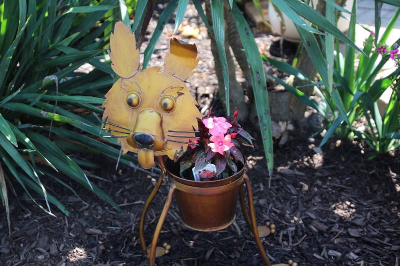Outdoors Plant in my garden metal sculpture Woof