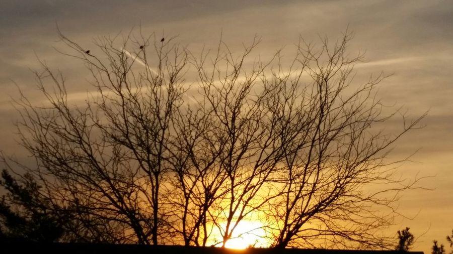 Sunset, straight, no chaser.