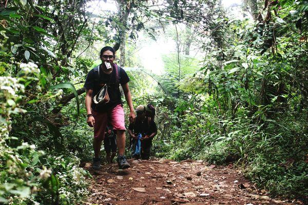 Gunung Gedepangrango Suryakencana