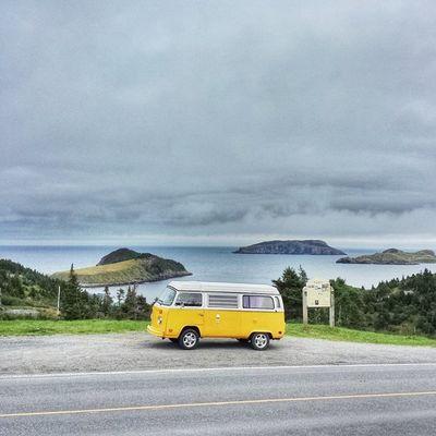 Had to stop for a picture! • Tstcanada with @explorecanada & @nfldandlabrador • Explorecanada TravelNL • Travel Canada Newfoundland Roadtrip Westfalia T2 SocialVan •