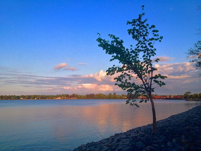 Pither's Point Park Fort Frances Ontario