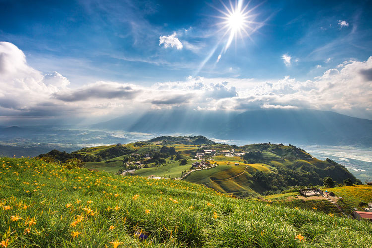 Autumn colors Day Lily Hualien, Taiwan Liushidan Shan Sixty Rock Mountain Sixty Stone Mountain Taiwan Yellow Flower Beauty In Nature Cloud - Sky Flower Grass Grassland Green Color Hualien Landscape Lens Flare Mountain Nature Outdoors Plant Scenics - Nature Sky Sunlight Tranquility