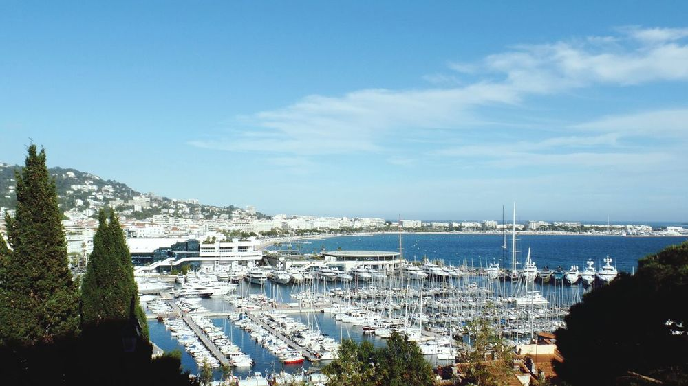 Yachts Out: paikura© CANNES EyeEm Best Shots Eye4photography  French Riviera AMPt_community Boats Boats Boats Waterfront