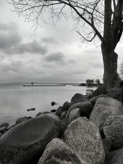 Low Angle Landscape Pier Blackandwhite