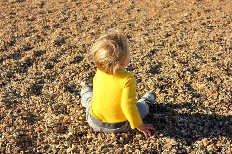 toddler on rock beach Blond Hair Boys Casual Clothing Child Childhood Day Full Length Gravel Hair High Angle View Innocence Land Leisure Activity Nature One Person Outdoors Pebble Preschool Preschool Age Sitting Yellow