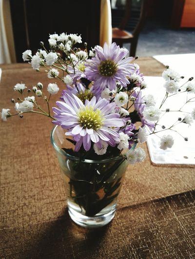 Flower Nature Arrangement Purple Flower Glass Manzanilla Cajamarca-Perú Margarita White Petals