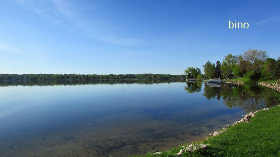 Blue Morning Glory Clear Sunny Day Around The Lake Smooth Like Glass Everything Is Still Shoreline Late Morning Lake Cadillac Pure Michigan