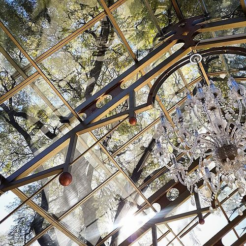 Always look up. Trees Chandelier Shepstonegardens Weddingvenue glassroof exquisite southafrica ilovesa johannesburg jozi Winter beautiful cityofjohannesburg sun sunlight rays