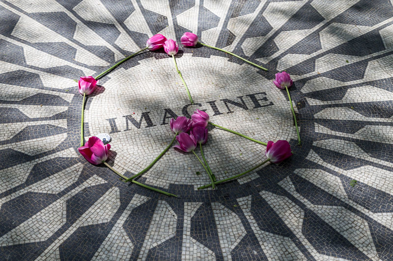 John Lennon memorial in Central Park. Memorial Central Park Central Park NYC CentralPark Flower Iconic Iconic Landmark Imagine John John Lennon Lennon Manhattan Music New York New York City Newyork Newyorkcity NY NYC NYC Photography Pink Roses Strawberry Fields Strawberry Fields Forever The Beatles