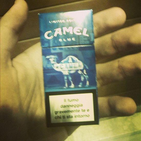 Camel new style Fashion Verycool Smoking