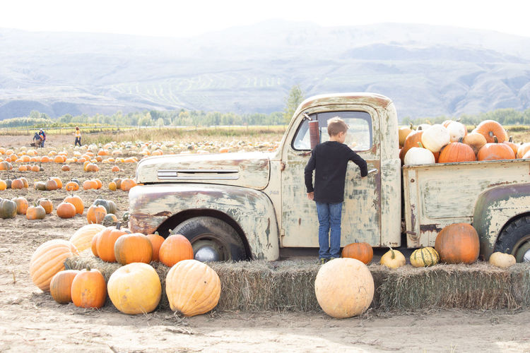Rear view of boy standing by old truck with pumpkin outdoors