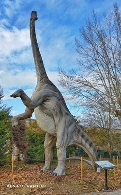Diplodocus longus Diplodocus Dinosaur Dinosauro Dinosauri Extinct Sculpture Dinosaurs Chianciano Terme Chianciano Replica  Replicas Diplodoco