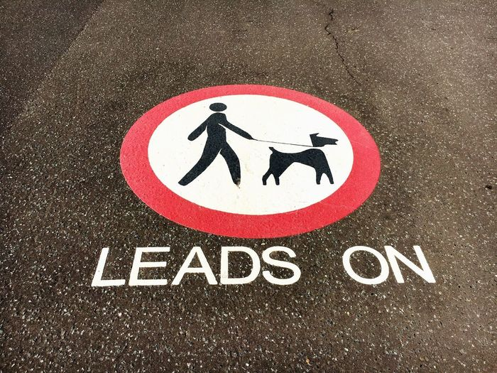 Human Representation Warning Sign Road Sign Communication Road High Angle View Day Bicycle Asphalt No People Close-up Outdoors Leads On Dogs Dogs On Leafs Dogs On Leads Dogs On Leads Sign