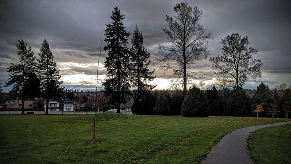 Windstorm is here... Vancouverbc