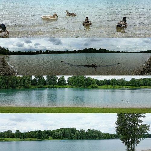 Karlsfeld Jezioro Woda