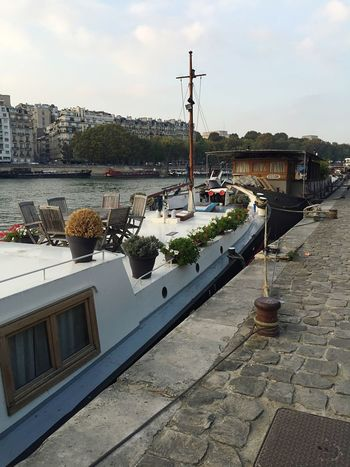 Miles Away Boat Trip Flowers In My Garden Water Paris Port Journey Ocean Life Sea Life Miles Away EyeEmNewHere EyeEmNewHere