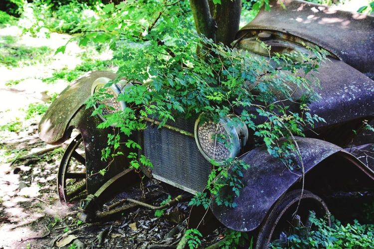 old car in the