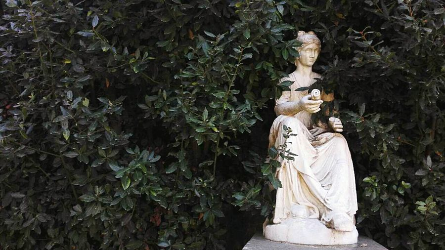EyeEmNewHere Statue No People Outdoors Day Nature Beauty In Nature Green Color Travelling Women Statua Bushes,