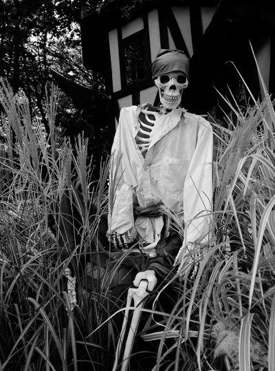 Pirate arrr First Eyeem Photo