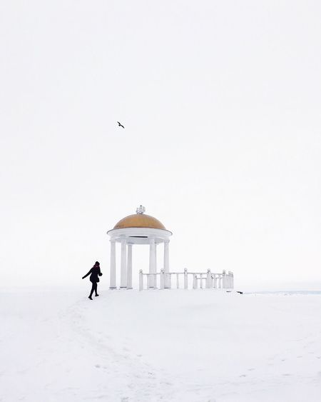 Snow Winter Cold Temperature White Color Bird Full Length Minimalism One Animal Clear Sky Real People Animals In The Wild Nature Warm Clothing One Person Day Outdoors Architecture Perching Mammal