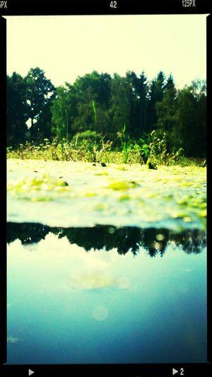Žárský rybník First Eyeem Photo