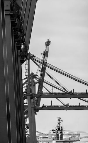Hamburg Industry Black And White Black And White Photography Business Finance And Industry Construction Container Crane Container Harbour Container Ship Containerbridge Crane From My Point Of View Hafen Hamburg Harbour Industrial Industry Logistics Monochrome Nautical Nautical Vessel Nikonphotography Outdoors Port Of Hamburg  Schwarzweiß Schwarzweißfotografie Steel