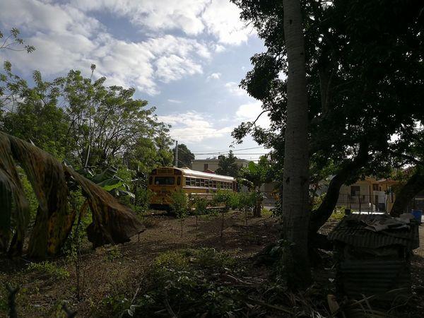 Outdoors No People Cloud - Sky Day Dominican Republic República Dominicana. Bus Yellow School Buses