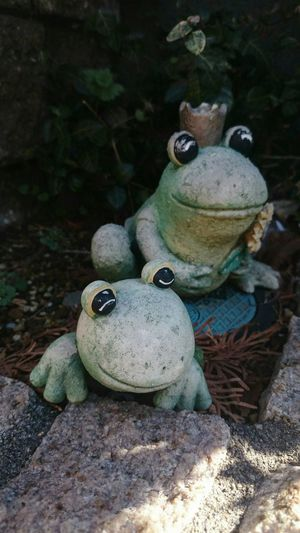 Hello World Spring Is Coming  Frogs Looking Into The Future カエル カエルたん❤