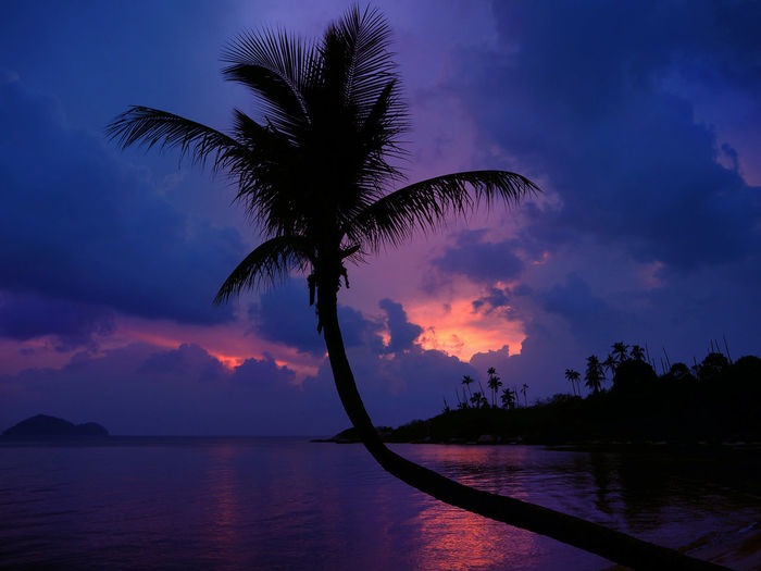 Silhouette Palm Tree On Beach Against Cloudy Sky At Sunset
