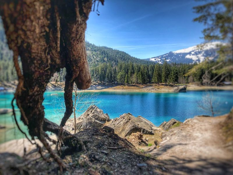 Caumasee Water Tree Sky Plant Tranquility Tranquil Scene Nature